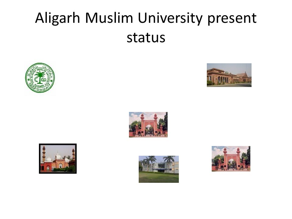 Aligarh Muslim University present status