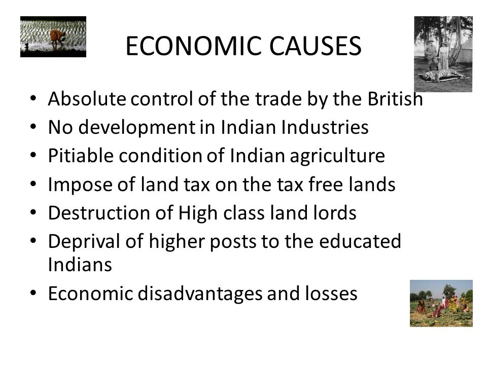 ECONOMIC CAUSES Absolute control of the trade by the British