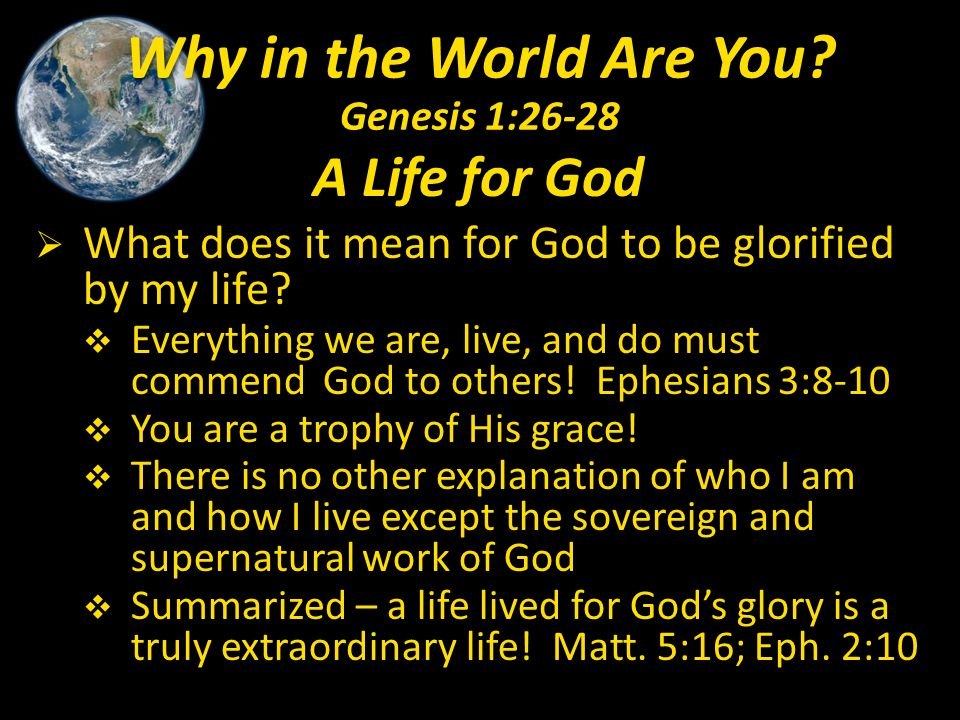 Why in the World Are You Genesis 1:26-28