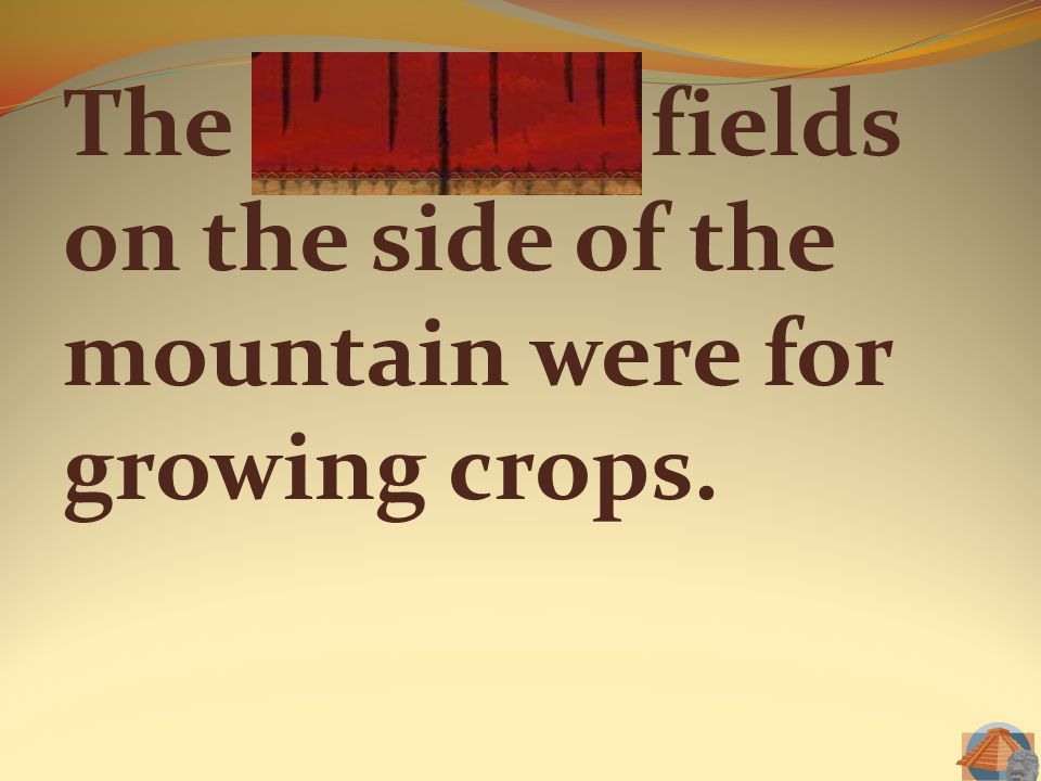 The terraced fields on the side of the mountain were for growing crops.