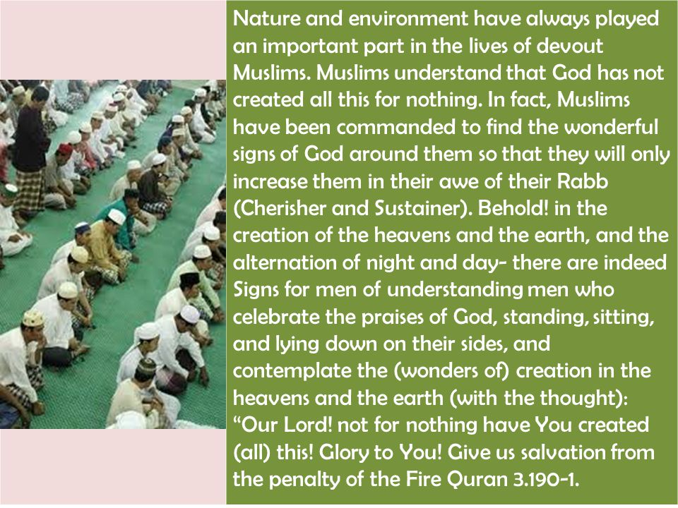 Nature and environment have always played an important part in the lives of devout Muslims.