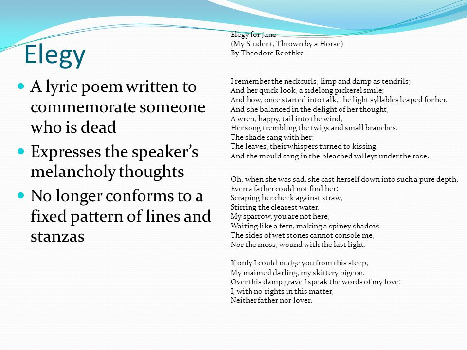 Elegy A lyric poem written to commemorate someone who is dead