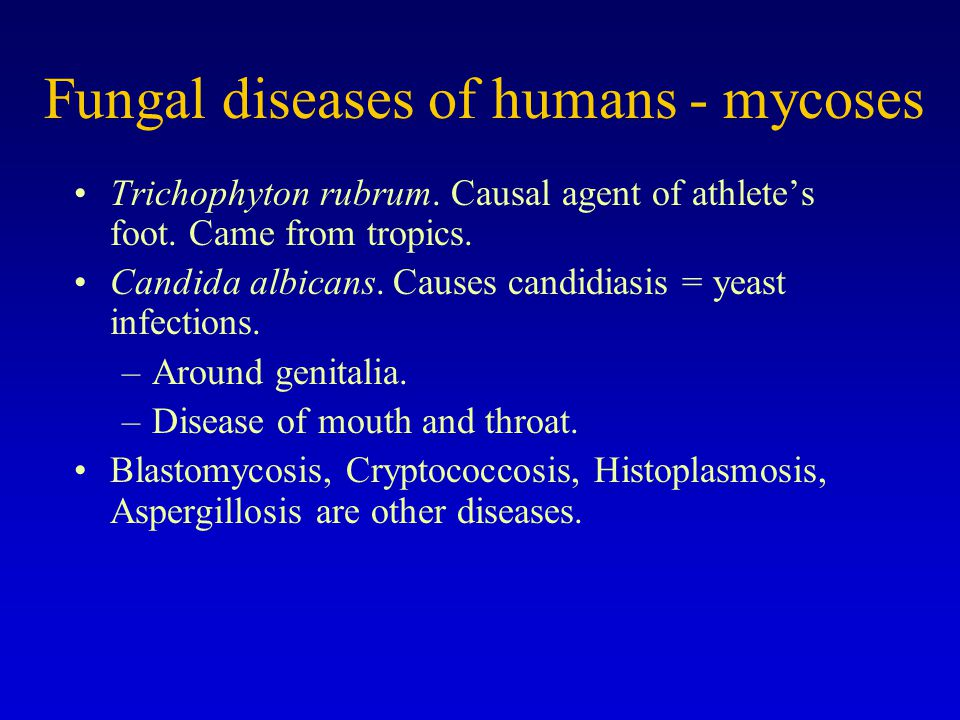 Fungal diseases of humans - mycoses