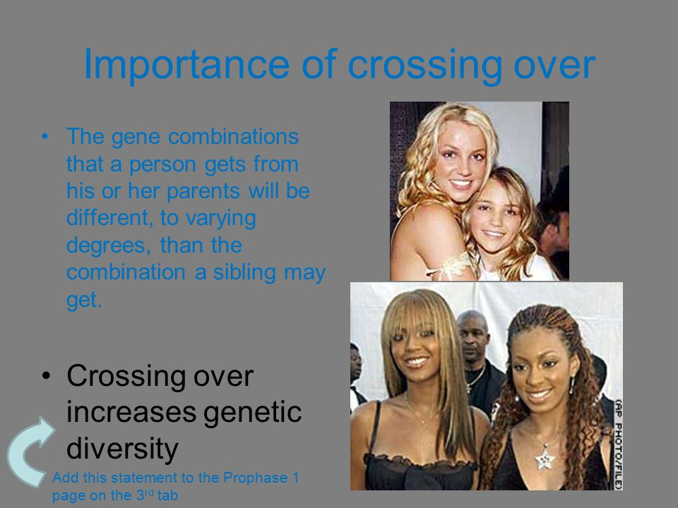 Importance of crossing over