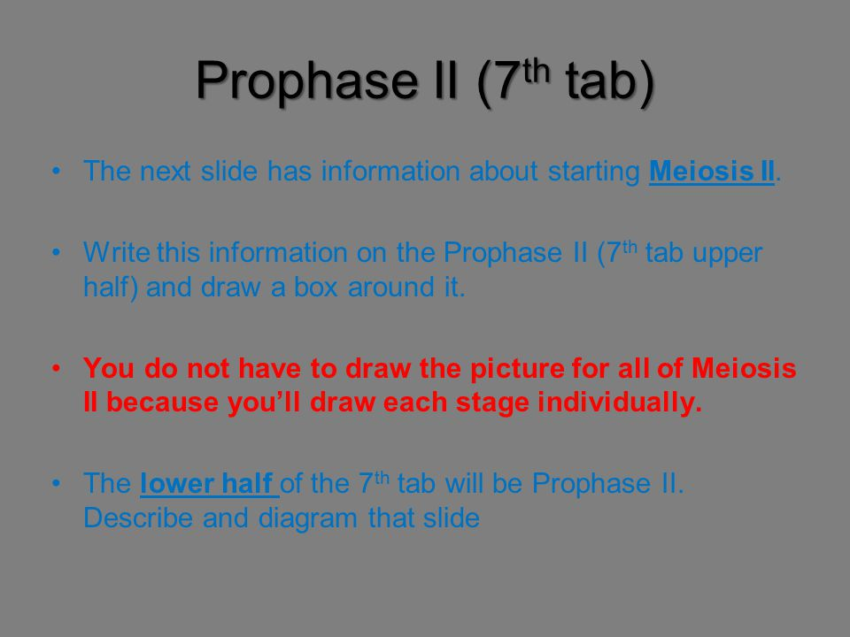 Prophase II (7th tab) The next slide has information about starting Meiosis II.