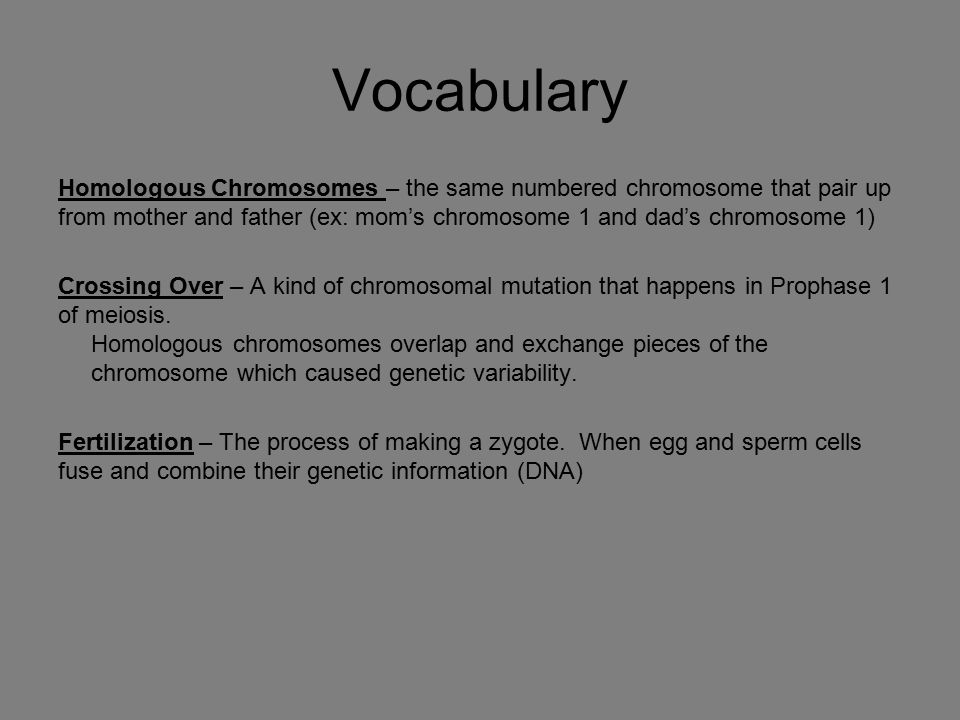 Vocabulary Homologous Chromosomes – the same numbered chromosome that pair up from mother and father (ex: mom's chromosome 1 and dad's chromosome 1)