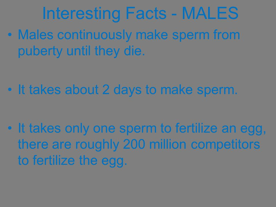 Interesting Facts - MALES