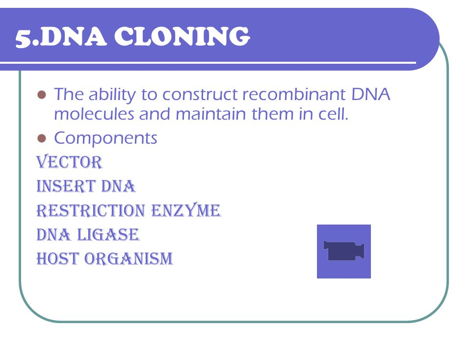 5.DNA CLONING The ability to construct recombinant DNA molecules and maintain them in cell. Components.