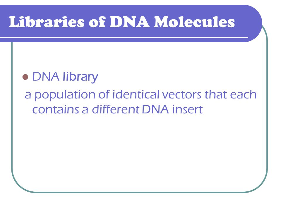 Libraries of DNA Molecules