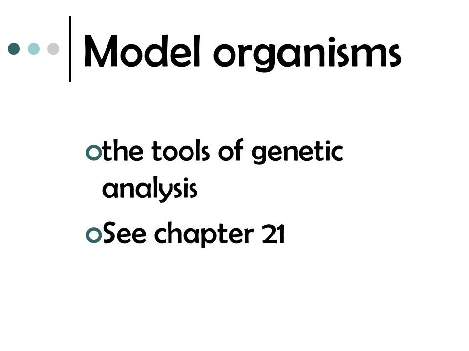 Model organisms the tools of genetic analysis See chapter 21