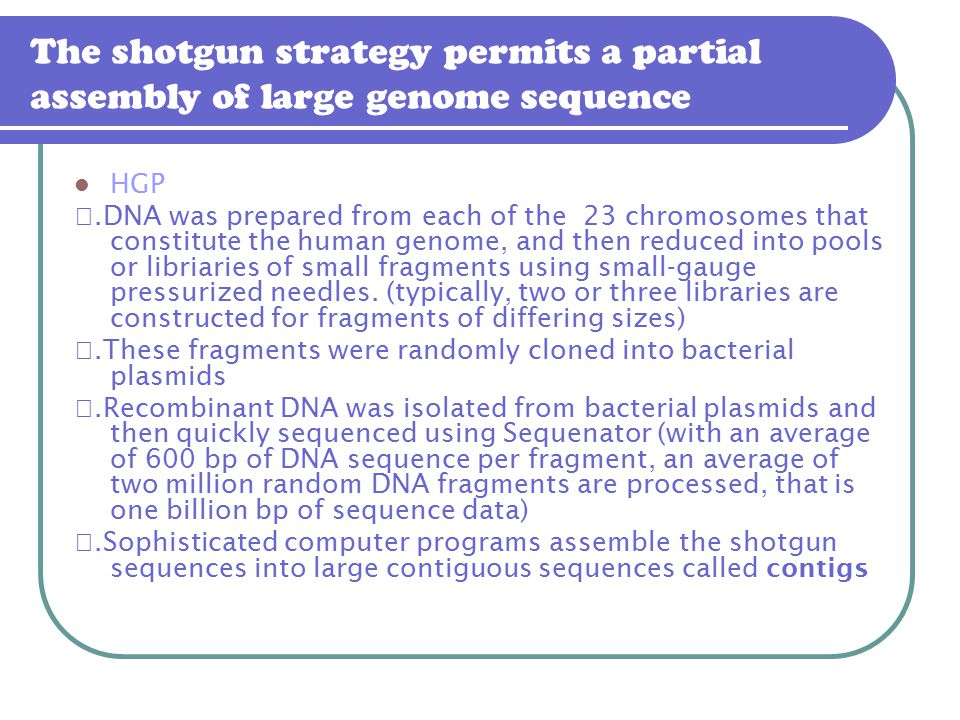 The shotgun strategy permits a partial assembly of large genome sequence