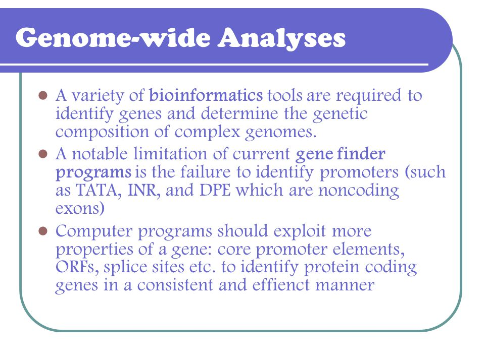 Genome-wide Analyses A variety of bioinformatics tools are required to identify genes and determine the genetic composition of complex genomes.
