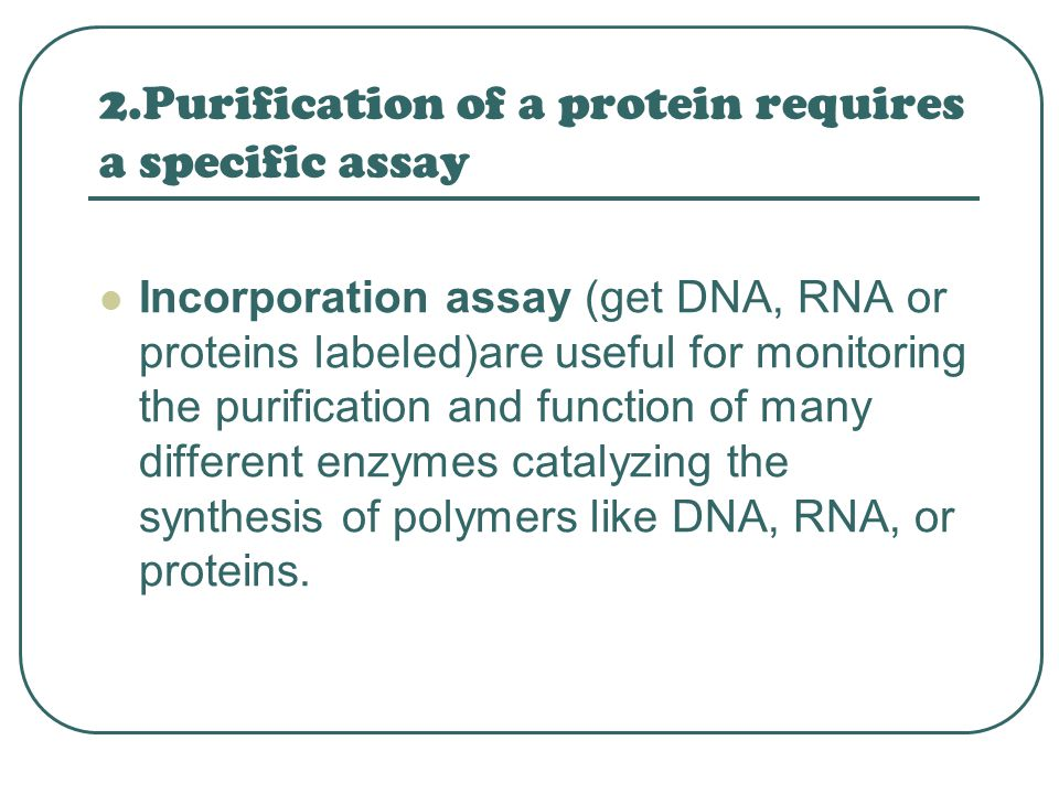 2.Purification of a protein requires a specific assay
