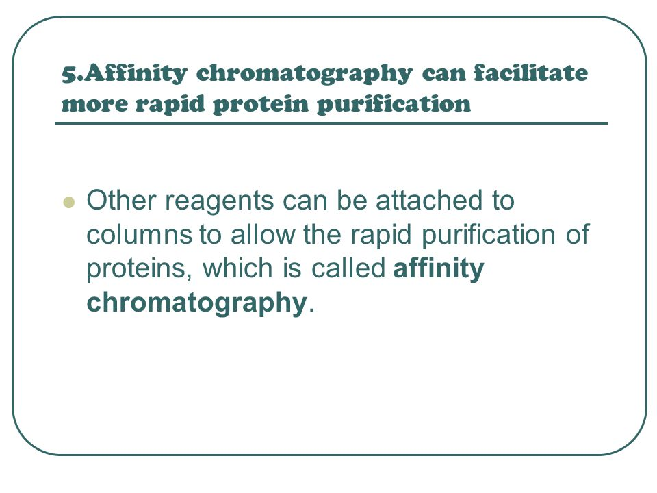 5.Affinity chromatography can facilitate more rapid protein purification