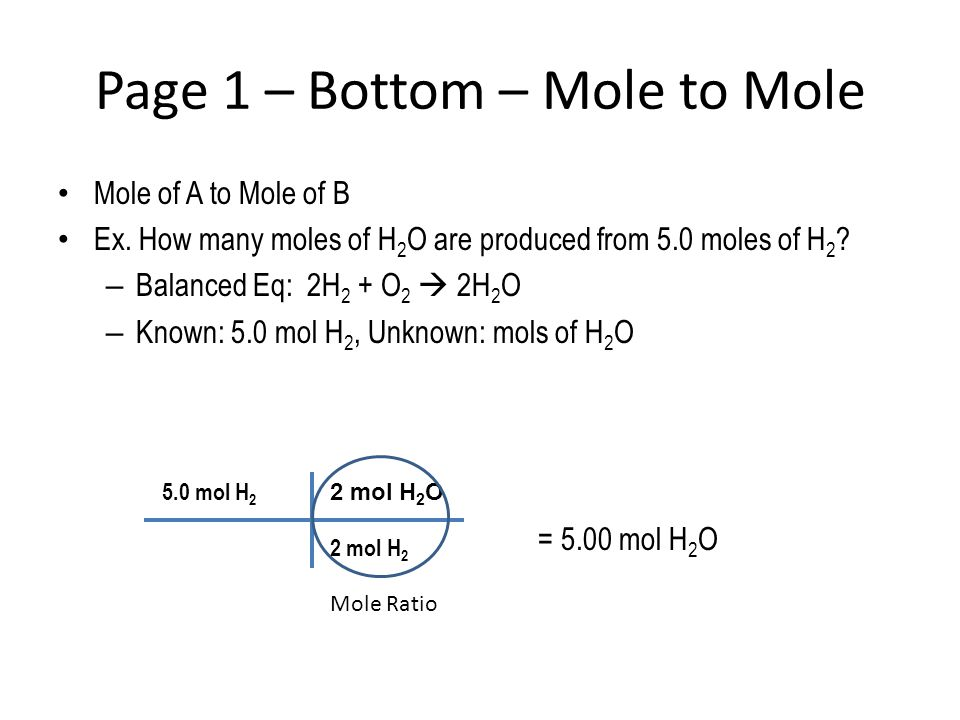 Page 1 – Bottom – Mole to Mole
