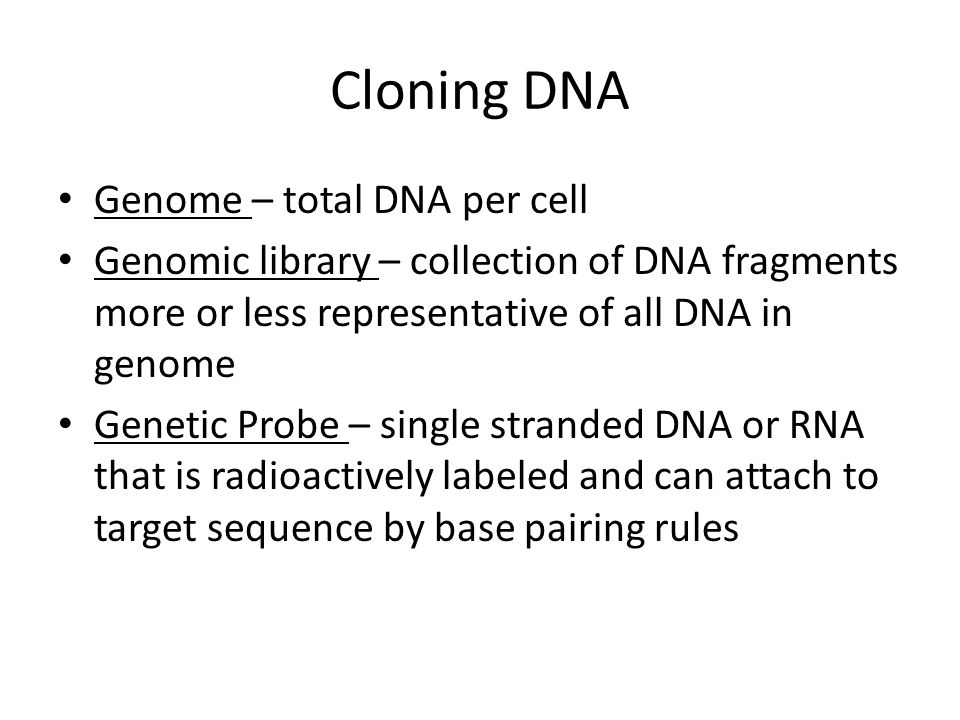Cloning DNA Genome – total DNA per cell