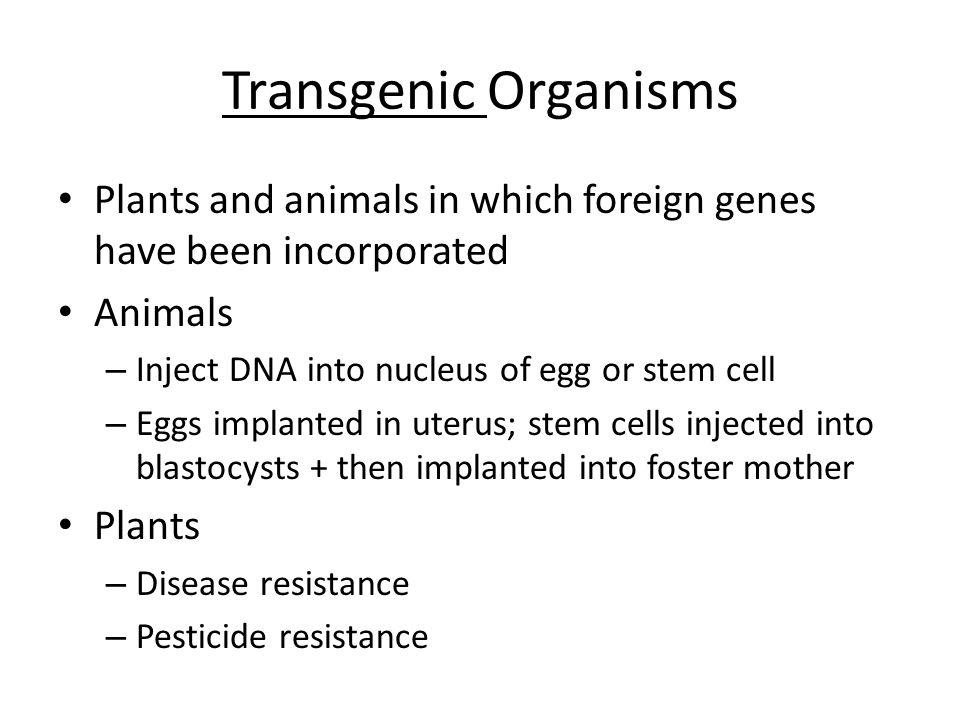 Transgenic Organisms Plants and animals in which foreign genes have been incorporated. Animals. Inject DNA into nucleus of egg or stem cell.