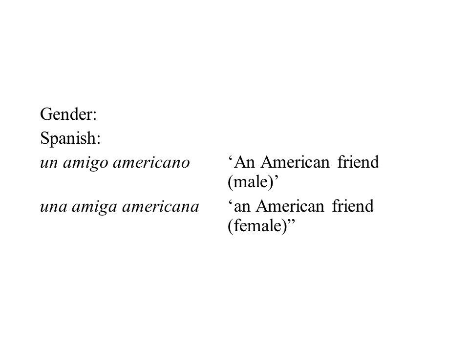 Gender: Spanish: un amigo americano 'An American friend (male)' una amiga americana 'an American friend (female)