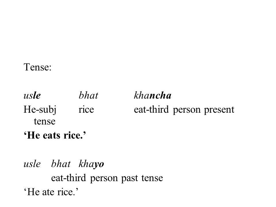 Tense: usle bhat khancha. He-subj rice eat-third person present tense. 'He eats rice.' usle bhat khayo.