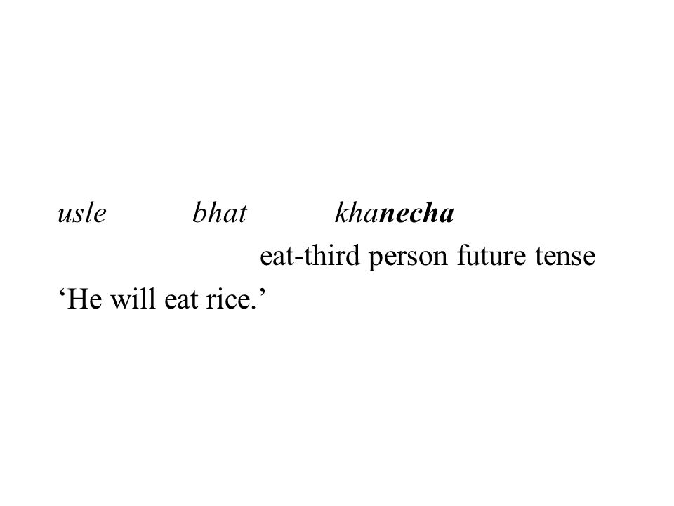 usle bhat khanecha eat-third person future tense 'He will eat rice.'