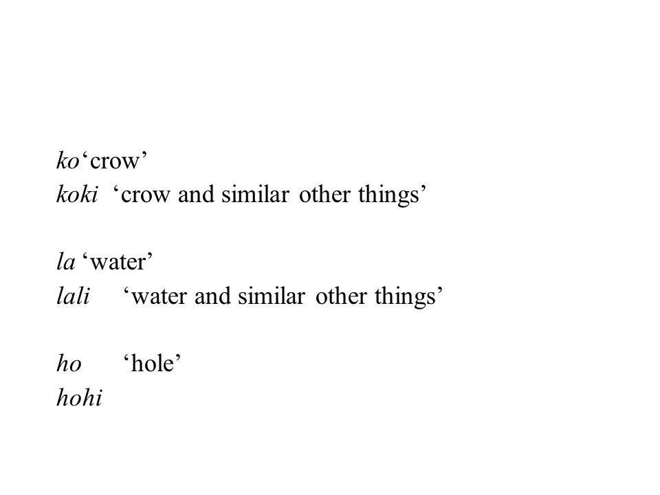 ko 'crow' koki 'crow and similar other things' la 'water' lali 'water and similar other things'