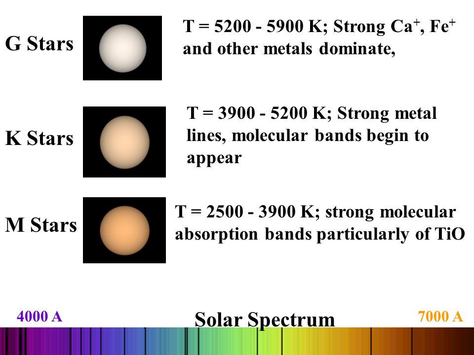 G Stars K Stars M Stars Solar Spectrum