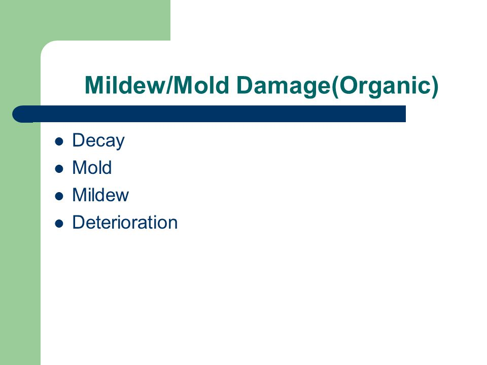 Mildew/Mold Damage(Organic)