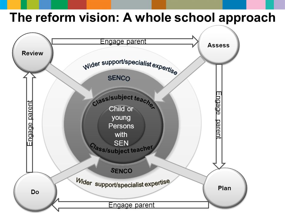 The reform vision: A whole school approach