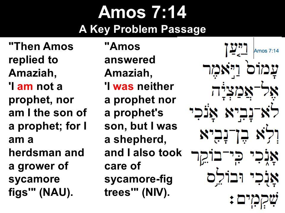 Amos 7:14 A Key Problem Passage
