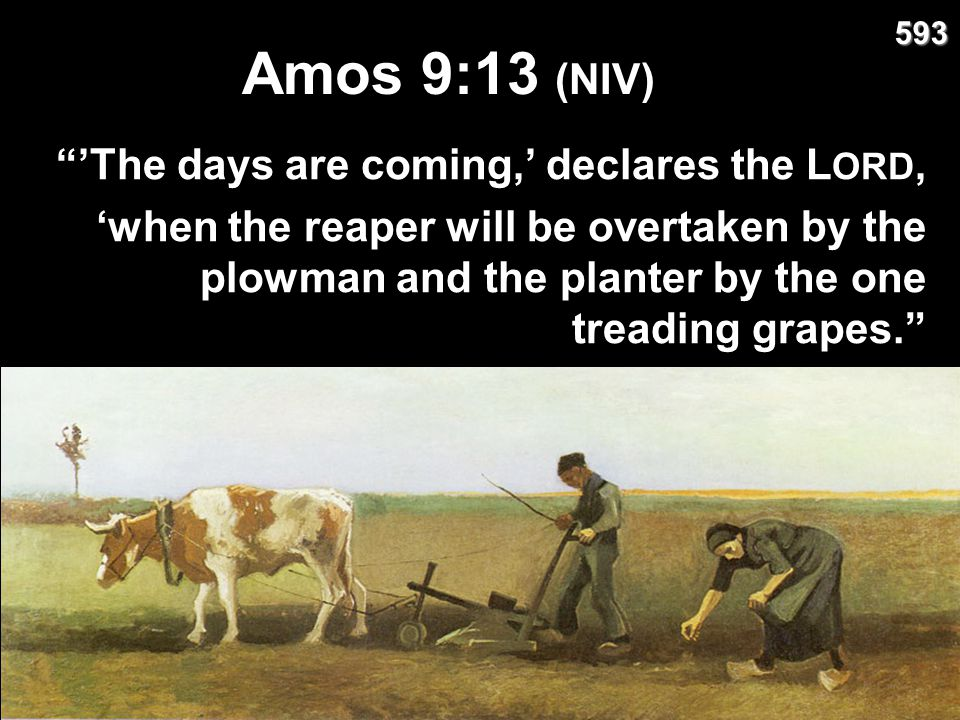 Amos 9:13 (NIV) 'The days are coming,' declares the LORD,