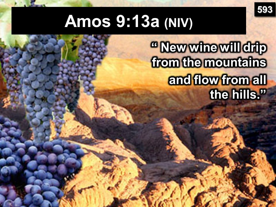 Amos 9:13a (NIV) New wine will drip from the mountains