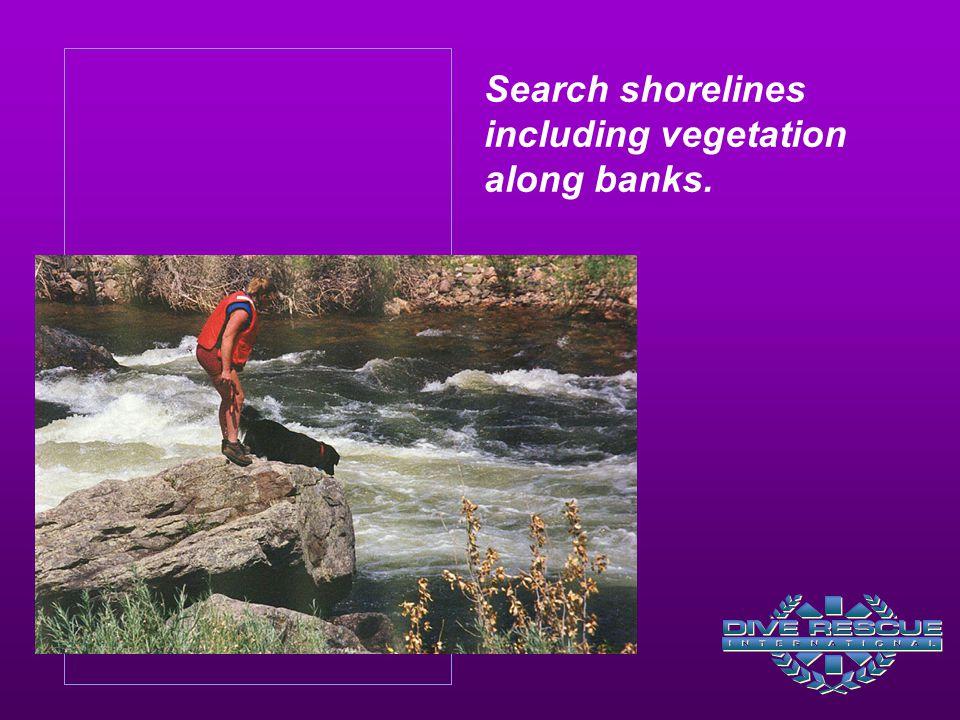 Search shorelines including vegetation along banks.