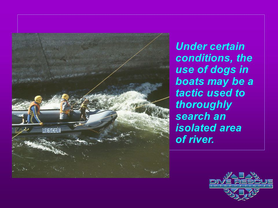 Under certain conditions, the use of dogs in boats may be a tactic used to thoroughly search an isolated area of river.