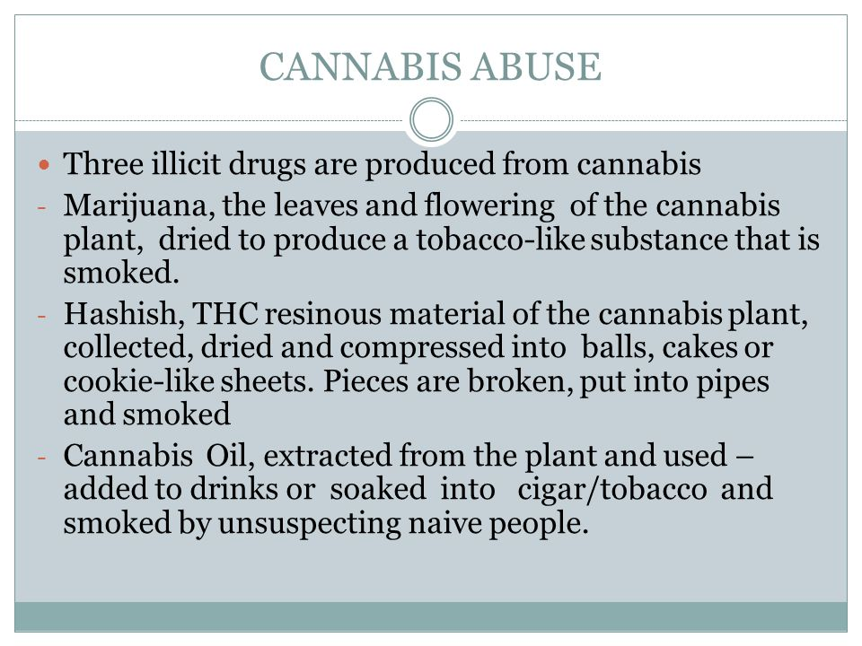 CANNABIS ABUSE Three illicit drugs are produced from cannabis