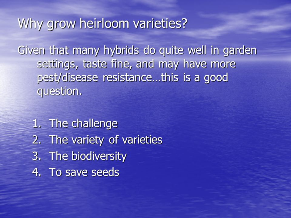 Why grow heirloom varieties