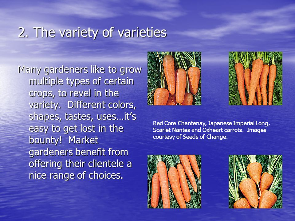 2. The variety of varieties