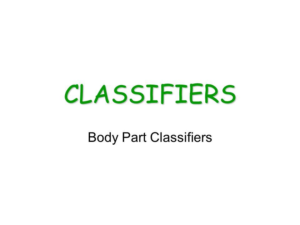 CLASSIFIERS Body Part Classifiers