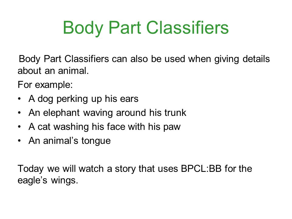 Body Part Classifiers For example: A dog perking up his ears