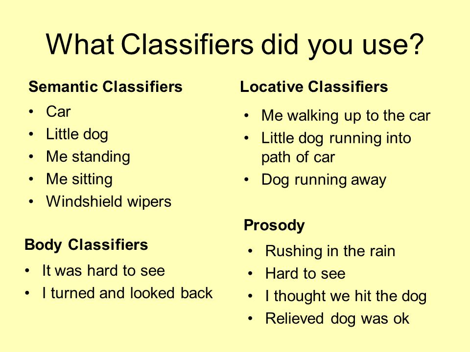What Classifiers did you use