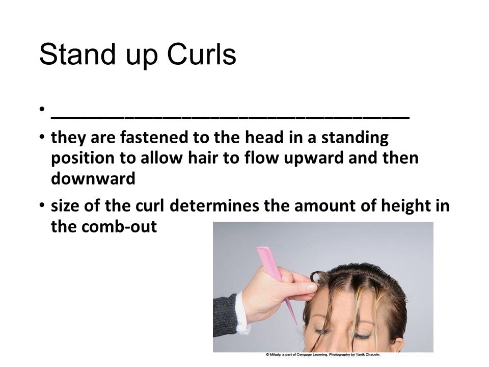 Stand up Curls ______________________________________