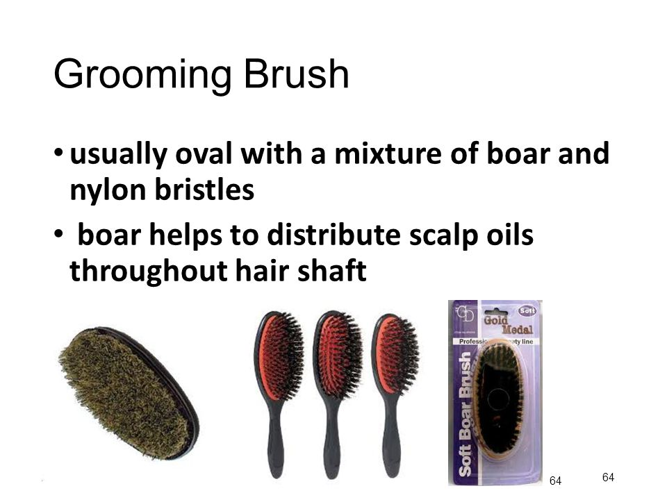 Grooming Brush usually oval with a mixture of boar and nylon bristles