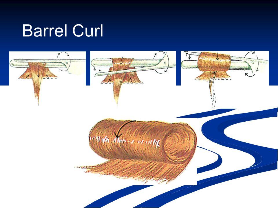 Barrel Curl