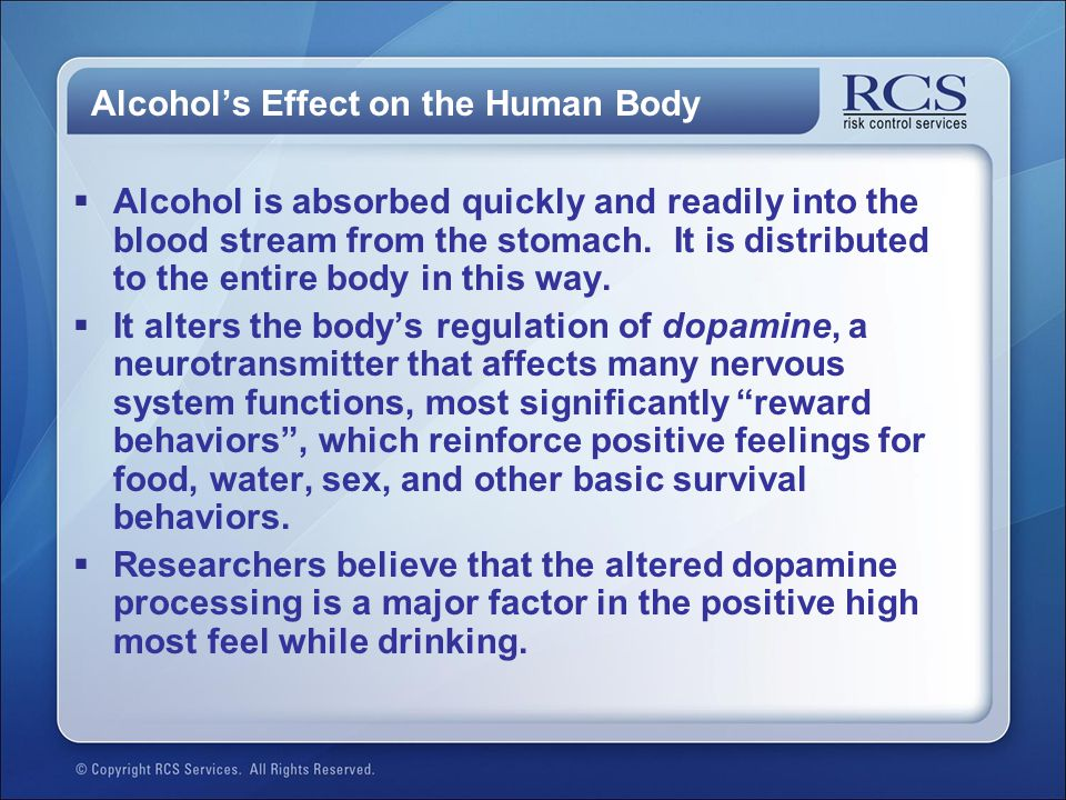 Alcohol's Effect on the Human Body