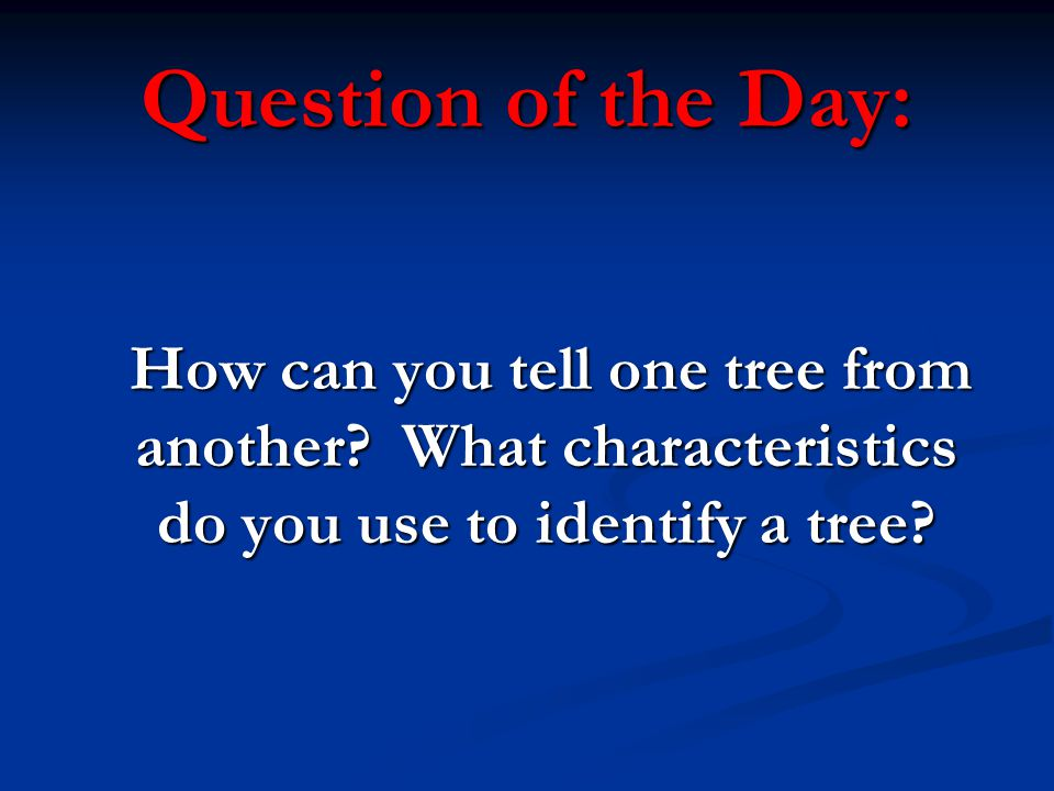 Question of the Day: How can you tell one tree from another.