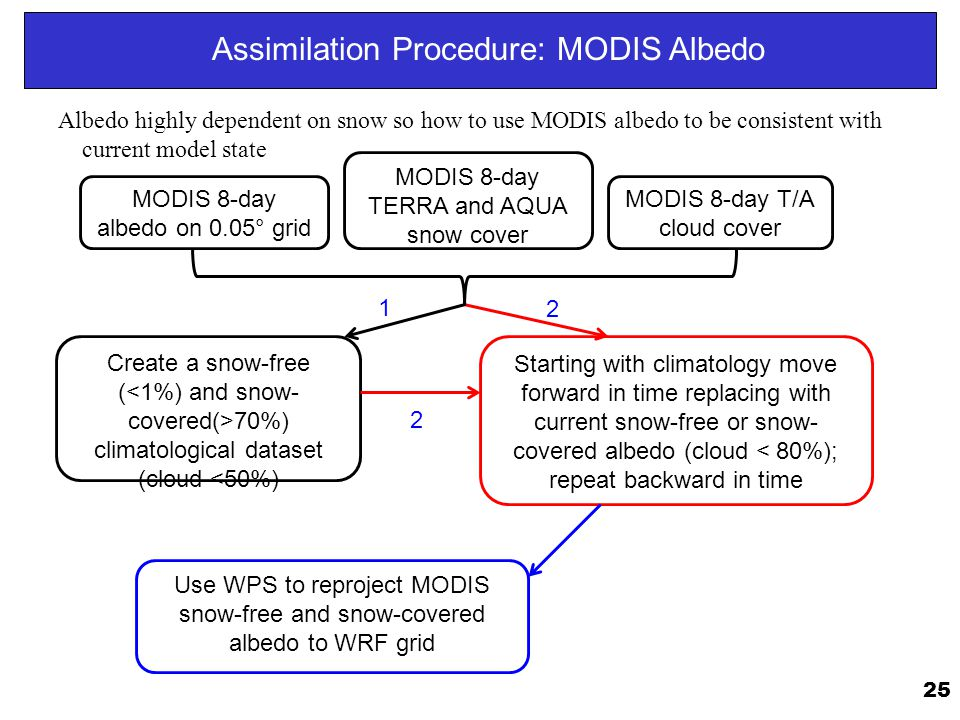 Assimilation Procedure: MODIS Albedo
