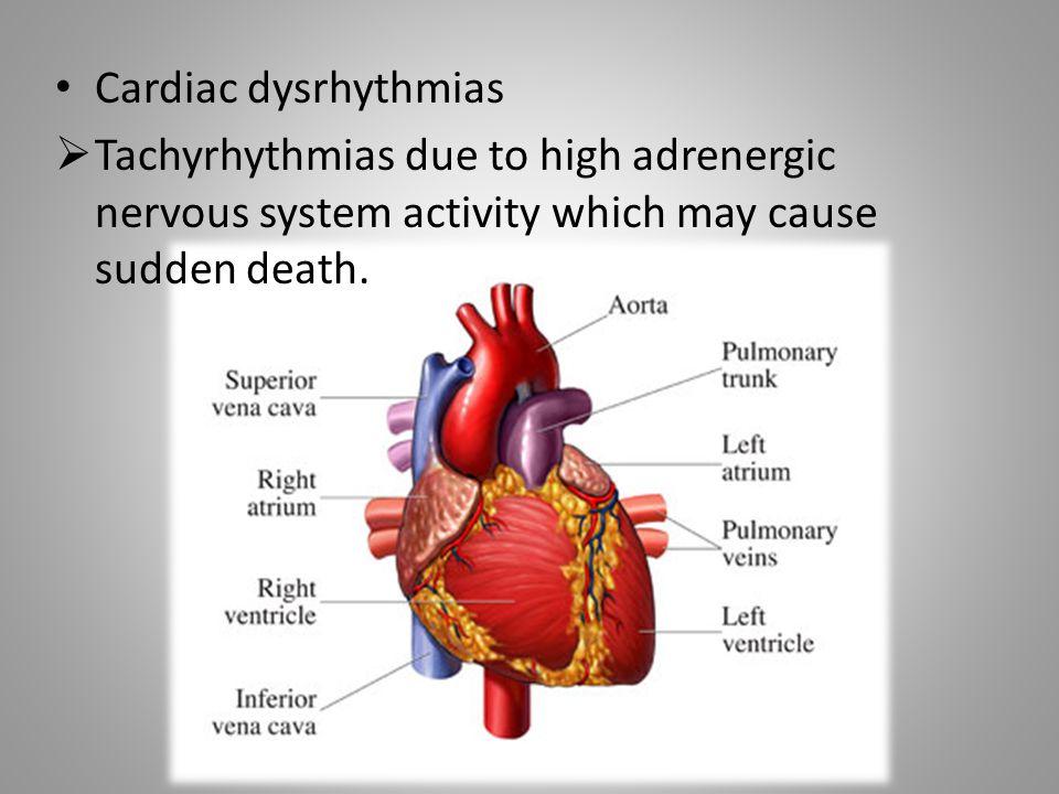 Cardiac dysrhythmias Tachyrhythmias due to high adrenergic nervous system activity which may cause sudden death.
