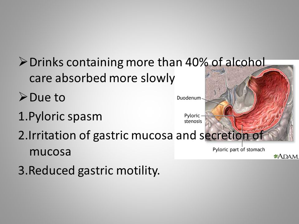 Drinks containing more than 40% of alcohol care absorbed more slowly