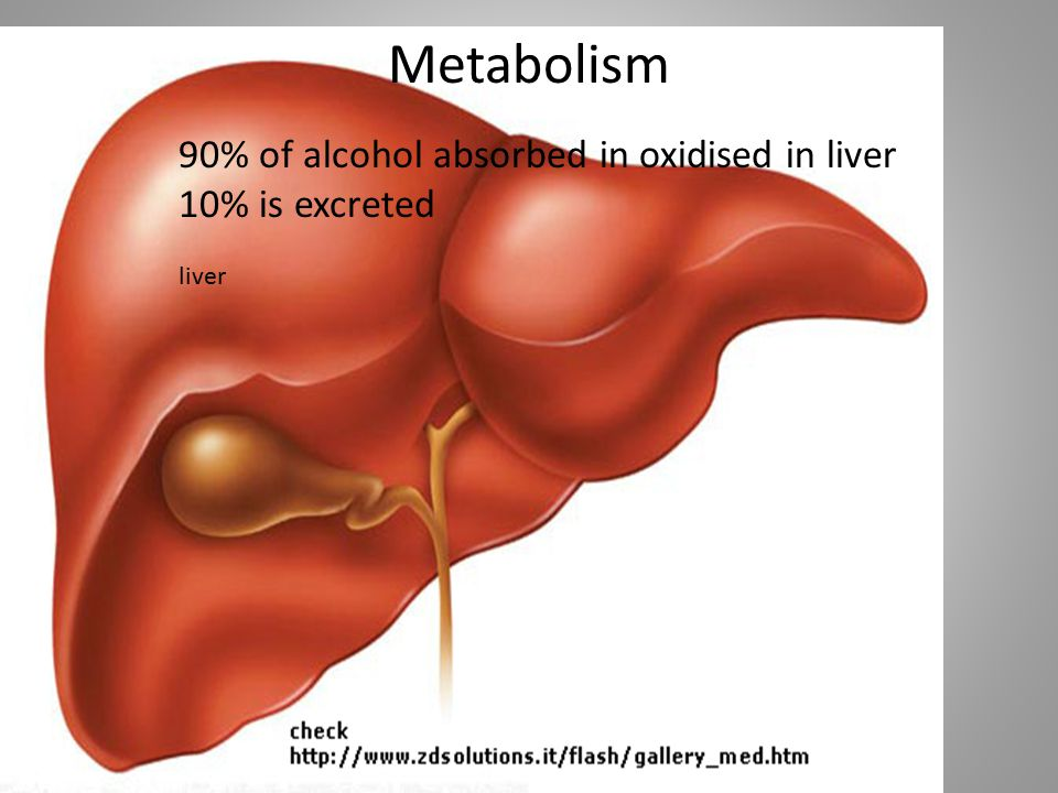 Metabolism 90% of alcohol absorbed in oxidised in liver
