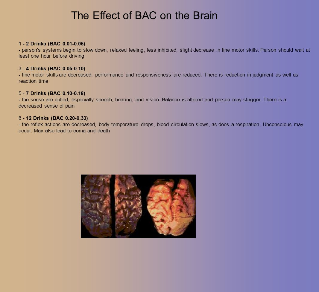 The Effect of BAC on the Brain