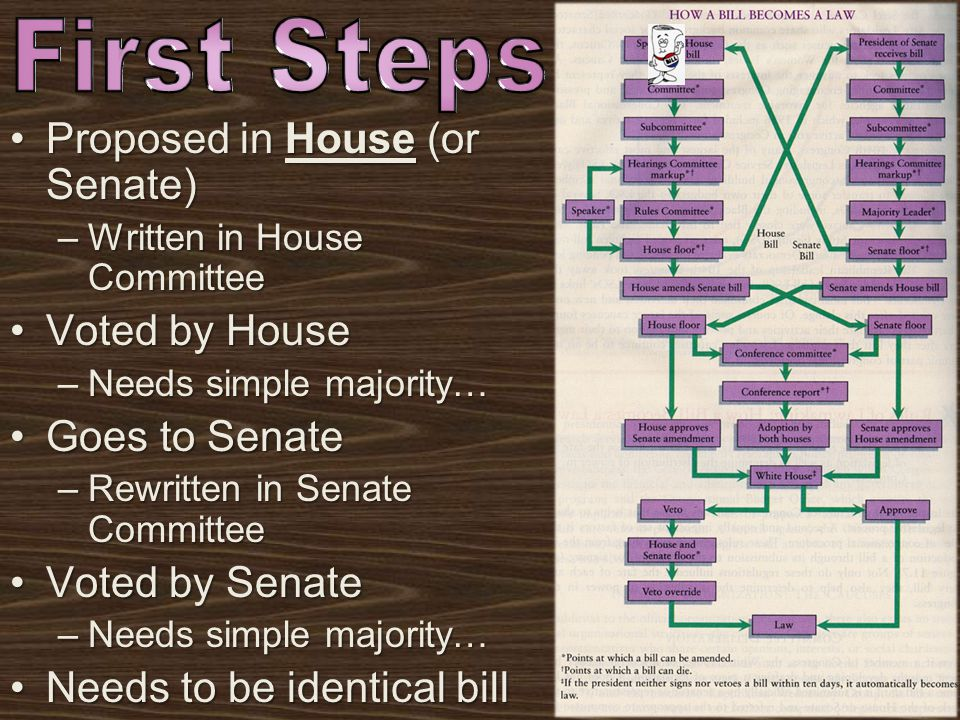 First Steps Proposed in House (or Senate) Voted by House